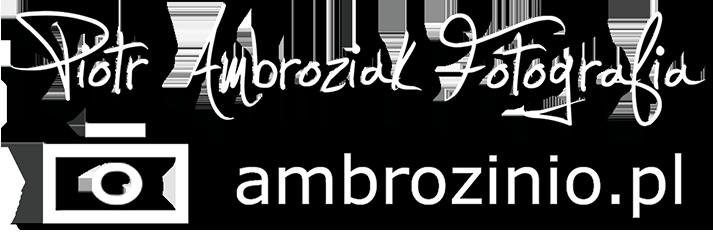 Ambrozinio Sklep - fotografia z pasją
